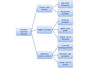 diagram of main ways to increase customer revenues